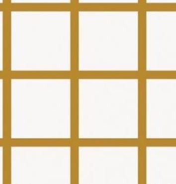 CARREAU FENETRE -Chemise carreaux fenêtre
