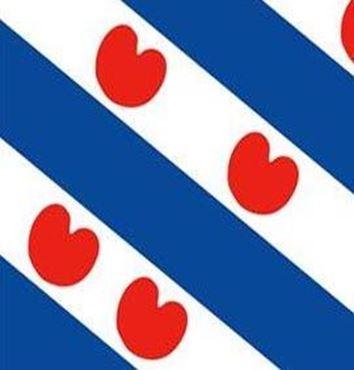 drapeau de la Frise